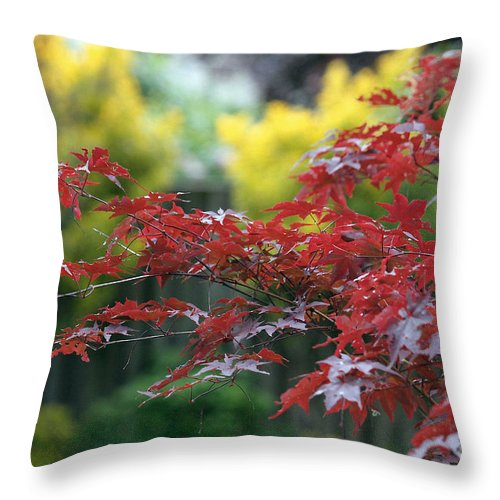 Glimpses Of Autumn Throw Pillow featuring the photograph Red And Yellow Leaves by Luv Photography
