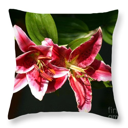 Red Lily Throw Pillow featuring the photograph Red Lily by Susanne Baumann