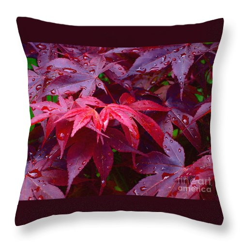Rain Throw Pillow featuring the photograph Red Maple After Rain by Ann Horn