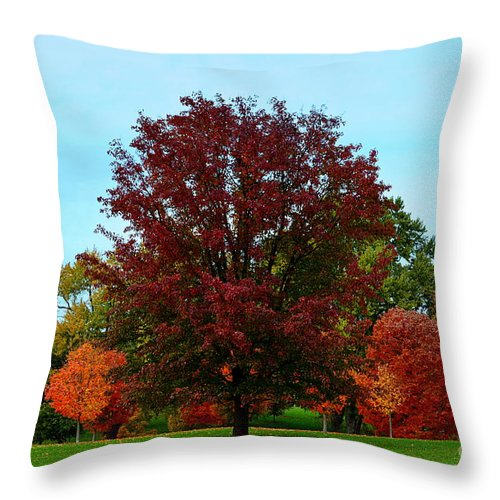 Red Oak Throw Pillow featuring the photograph Red Oak In Loose Park by Catherine Sherman