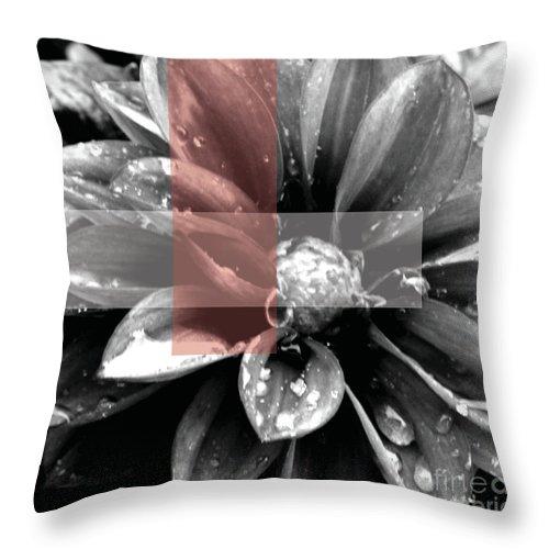 Jamie Lynn Gabrich Throw Pillow featuring the photograph Red Rain Blossom by Jamie Lynn