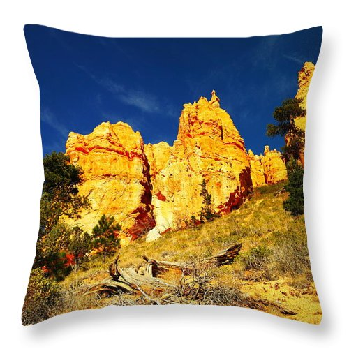 Mountains Throw Pillow featuring the photograph Red Rock Foreground Blue Sky by Jeff Swan