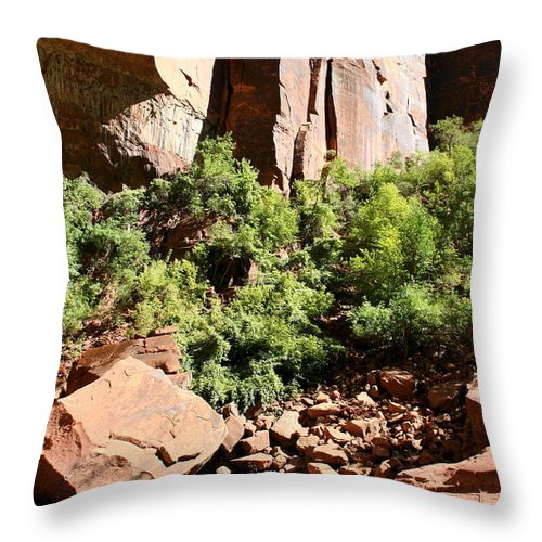 Red Rocks Throw Pillow featuring the photograph Red Rock Reflection by Christiane Schulze Art And Photography