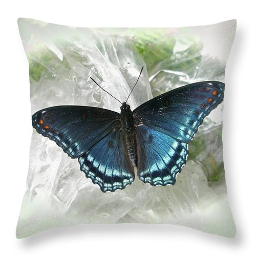 Butterfly Throw Pillow featuring the photograph Red-spotted Purple Butterfly - Limenitis Arthemis by Mother Nature