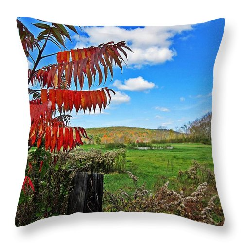 Field Throw Pillow featuring the photograph Red Sumac Field by MTBobbins Photography