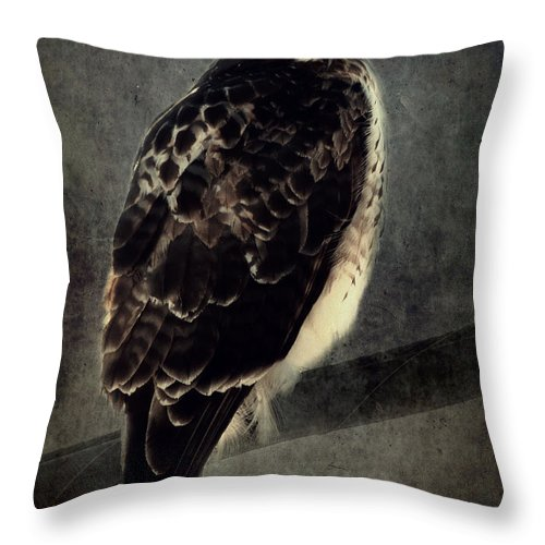 Hawk Throw Pillow featuring the photograph Red Tailed Hawk by Mim White