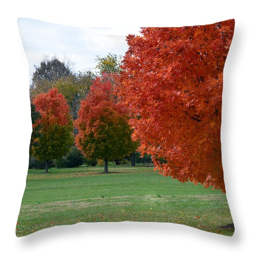 Nature Throw Pillow featuring the photograph Red Trees 2 by Lena Wilhite