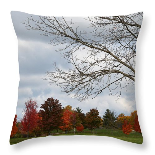 Nature Throw Pillow featuring the photograph Red Trees by Lena Wilhite