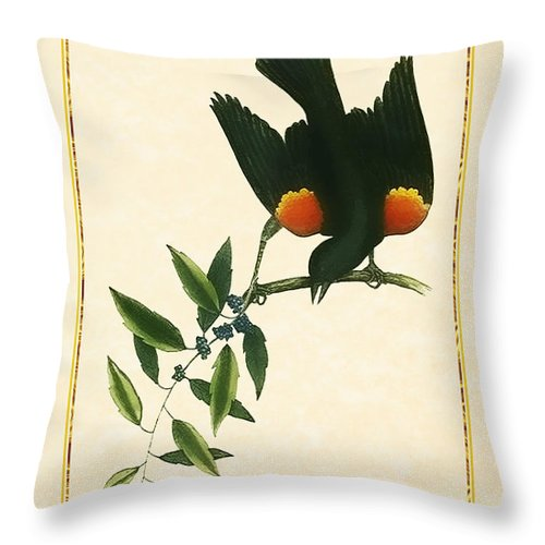 Antique Vintage Traditional Bird Birds Realistic Formal Animal Wild Flying Avian Feathers  Throw Pillow featuring the painting Redwing Blackbird Vertical by Elaine Plesser