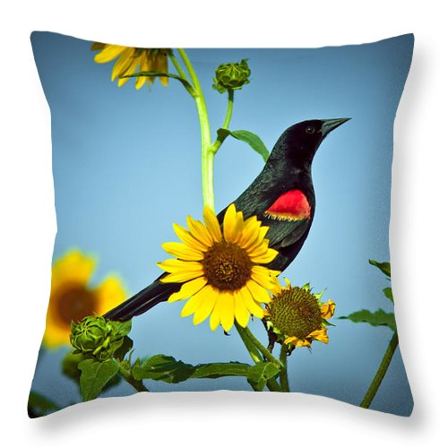 Animal Throw Pillow featuring the photograph Redwing In Sunflowers by Robert Frederick