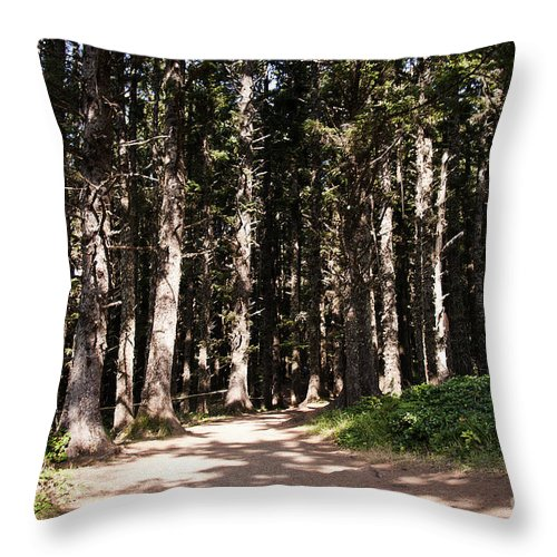 Giant Throw Pillow featuring the photograph Redwood Forest by Brenda Kean