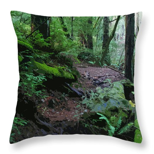 Redwood Forest Throw Pillow featuring the photograph Redwood Forest Scene 1 by Ben Upham III