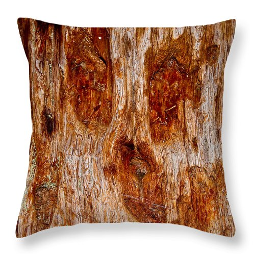 Gaint Redwood Tree Throw Pillow featuring the photograph Redwood Spirit by Brian Williamson