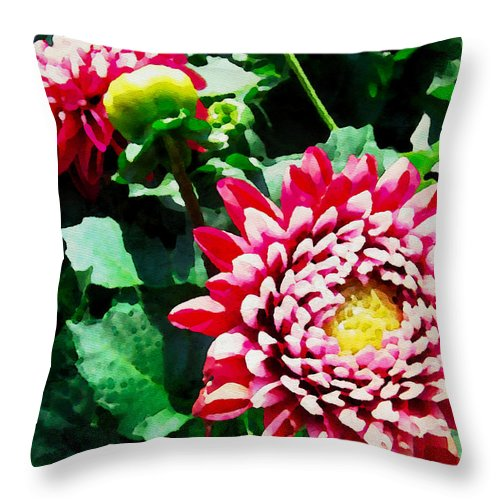 Flowers Throw Pillow featuring the photograph Ref Dahlias by Alice Gipson