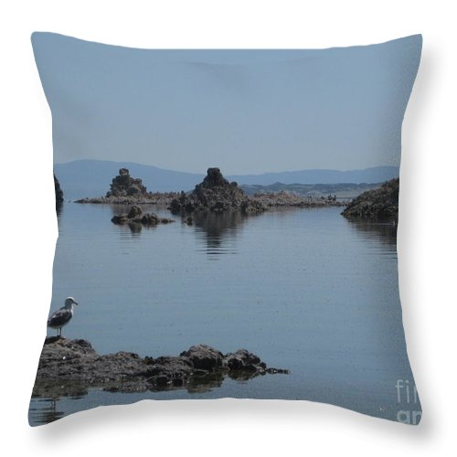 Yosemite Throw Pillow featuring the photograph Reflection by AC Hamilton