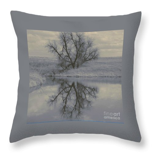 Tree Throw Pillow featuring the photograph Reflection by Brandi Maher