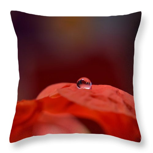 Michelle Throw Pillow featuring the photograph Reflection In Red by Michelle Meenawong