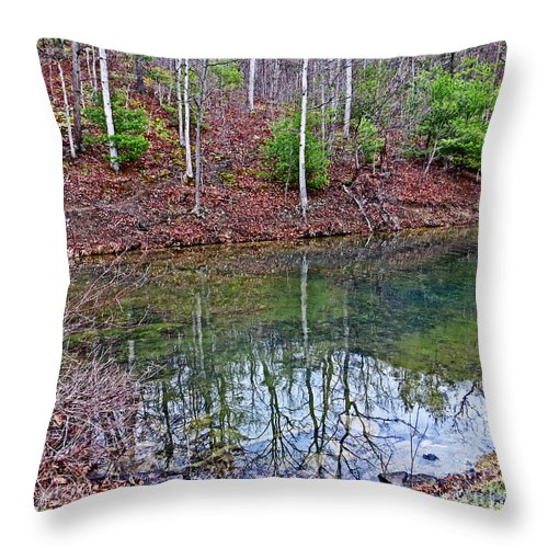 Nature Throw Pillow featuring the photograph Reflection In The Lake by Dawn Gari