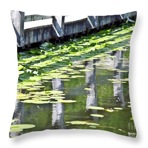 Reflection Throw Pillow featuring the photograph Reflection On The Pond by David Fabian