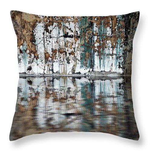 Reflection Throw Pillow featuring the photograph Reflection by Rick Mosher
