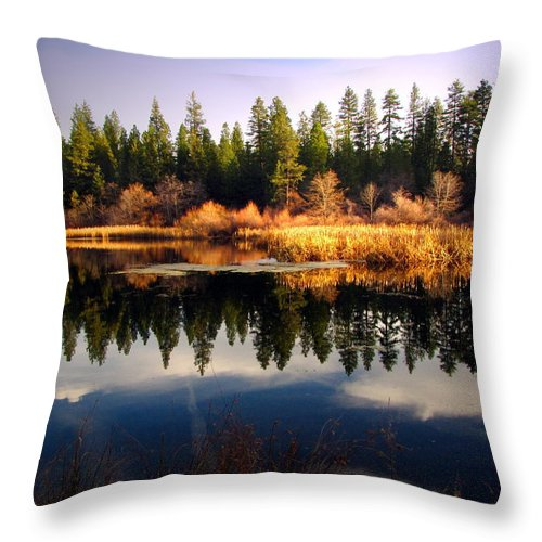 Lake Throw Pillow featuring the photograph Reflections At Grace Lake by Joyce Dickens