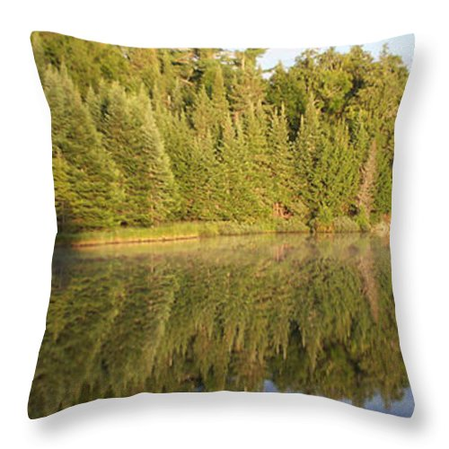 Canisbay Lake Throw Pillow featuring the photograph Reflections - Canisbay Lake - Detail by Richard Andrews