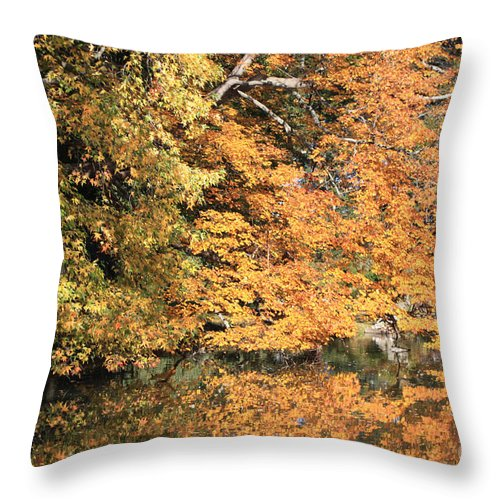 Reflections Ii Throw Pillow featuring the photograph Reflections II by John Telfer