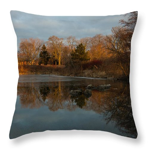 Reflections Throw Pillow featuring the photograph Reflections In My Favorite Pond by Georgia Mizuleva
