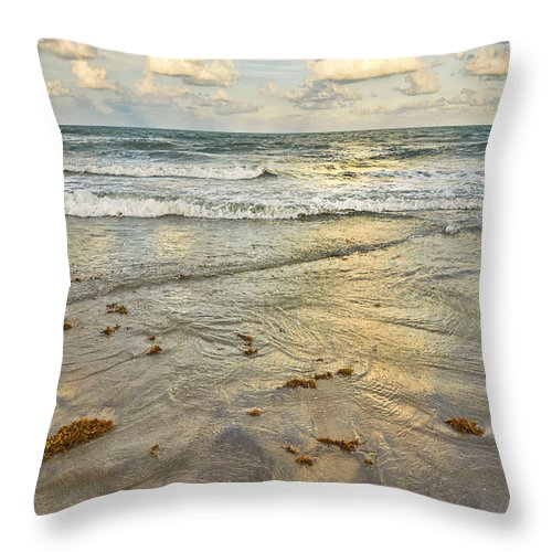 Ocean Throw Pillow featuring the photograph Reflections In The Sand by Louise Hill