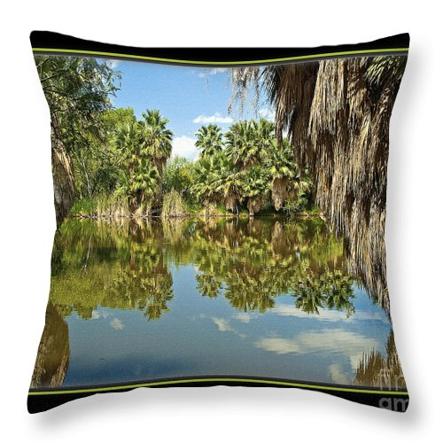 Park Throw Pillow featuring the photograph Reflections In Water by Larry White