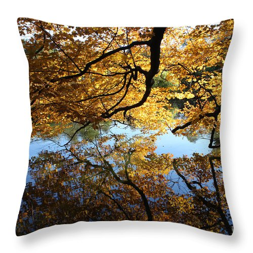 Reflections Throw Pillow featuring the photograph Reflections by John Telfer
