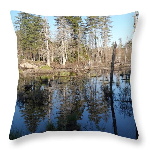 Maine Throw Pillow featuring the photograph Reflections Of Maine by James Potts
