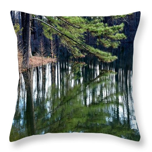 Reflections Of The Pine Throw Pillow featuring the photograph Reflections Of The Pine by Maria Urso