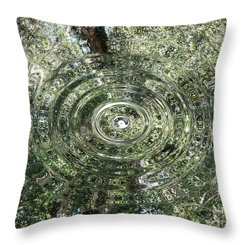 Forest Throw Pillow featuring the photograph Reflections Of Time by Joseph Baril