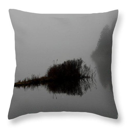 Boat Dock Throw Pillow featuring the photograph Reflections On A Lake by Rich Collins