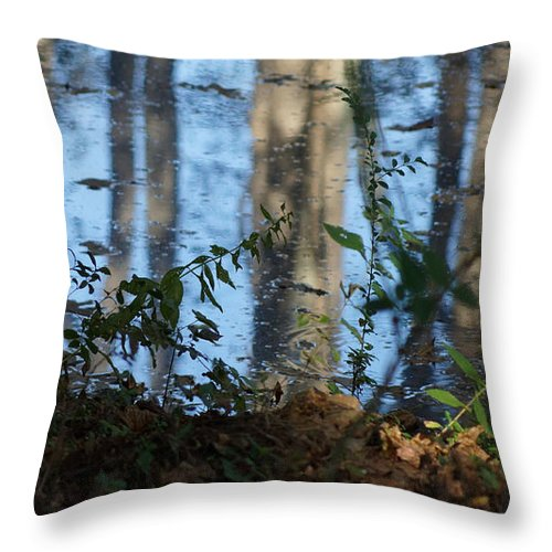 Autumn Leaves Throw Pillow featuring the photograph Reflections by Rafael Salazar