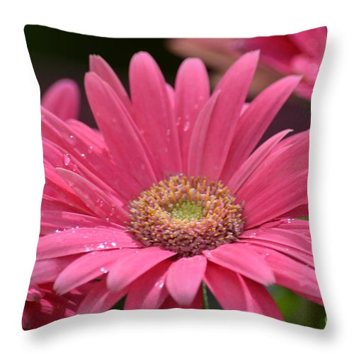 Rejoice It's Spring Throw Pillow featuring the photograph Rejoice It's Spring by Maria Urso