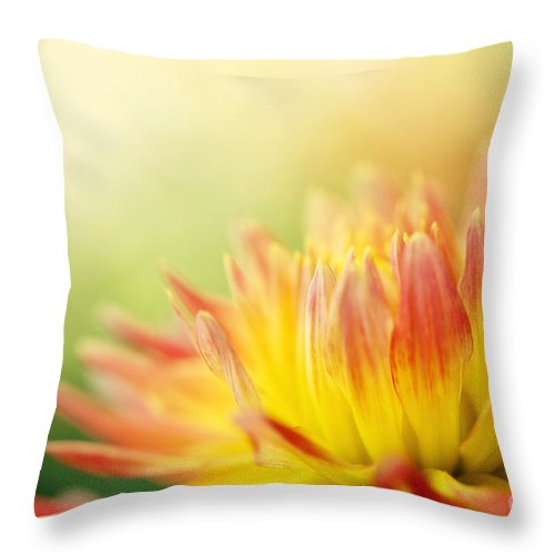 Dahlia Throw Pillow featuring the photograph Rejoice by Beve Brown-Clark Photography