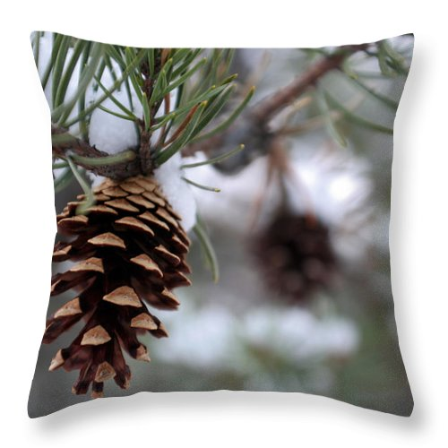 Tree Throw Pillow featuring the photograph Release by Allan Lovell
