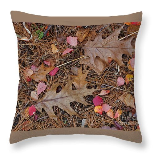 Leaf Throw Pillow featuring the photograph Remainders by Ann Horn