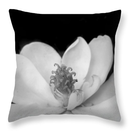 Remembering Imogen Cunningham Throw Pillow For Sale By Monte Landis
