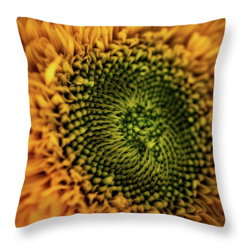 Beauty In Nature Throw Pillow featuring the photograph Remembering Tuscany by Venetta Archer