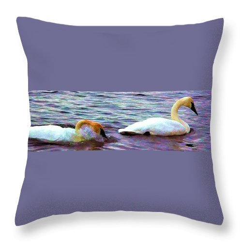 Swan Throw Pillow featuring the photograph Rest Now by Kathy Bassett