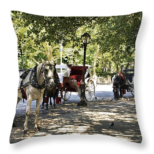 Horses Throw Pillow featuring the photograph Rest Stop - Central Park by Madeline Ellis