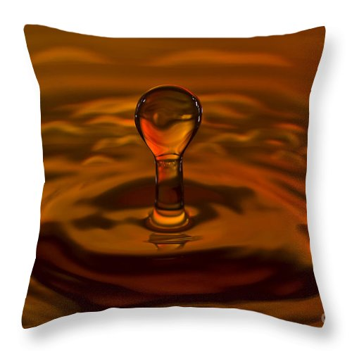 Drop Throw Pillow featuring the photograph Resurrection by Anthony Sacco