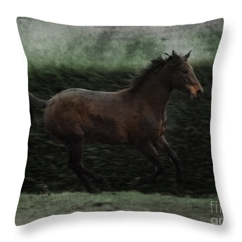 Horse Throw Pillow featuring the photograph Retro Horse by Angel Ciesniarska