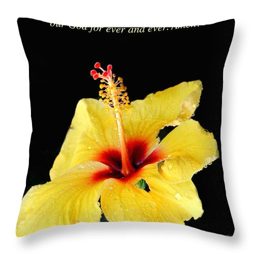 Revelation Throw Pillow featuring the photograph Revelation 7 Verse 12 by Debbie Nobile