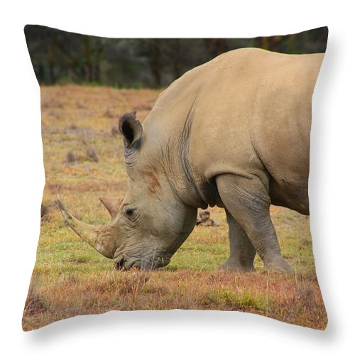 Rhino Throw Pillow featuring the photograph Rhinoceros by Amanda Stadther