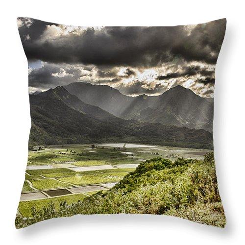 Hanalei Fields Of Taro Throw Pillow featuring the photograph Rice Paddies-kauai Hawaii by Douglas Barnard