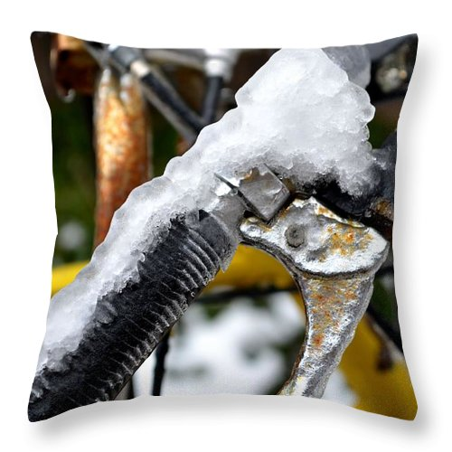 Ice Throw Pillow featuring the photograph Ride On The Rocks by Laureen Murtha Menzl